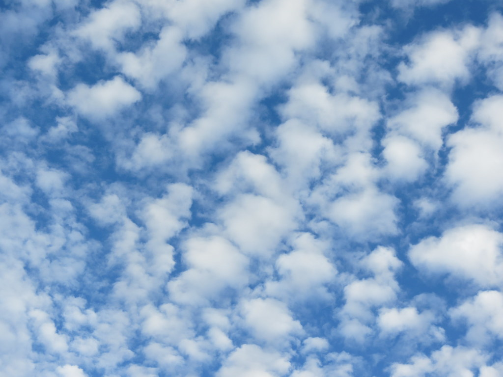 Image result for altocumulus clouds