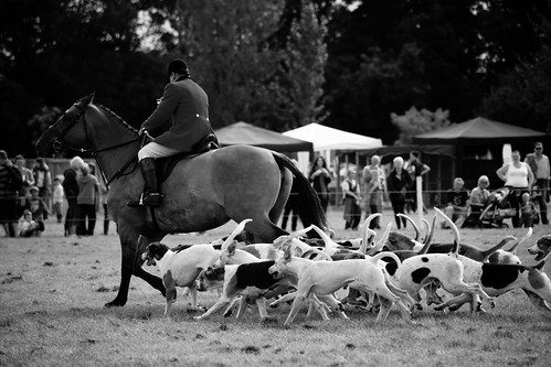 Warwickshire Countryside Day Sept 2012 | by mudd-photography.eu