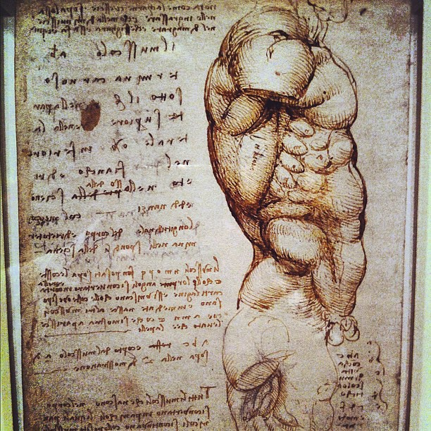 Leonardo Da Vinci anatomy drawing museum tour - the 100yo … | Flickr