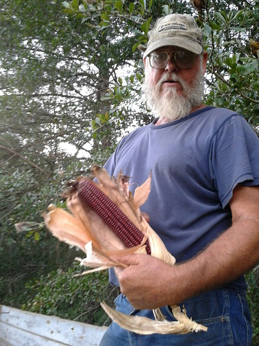 Terry and the red corn | by faul