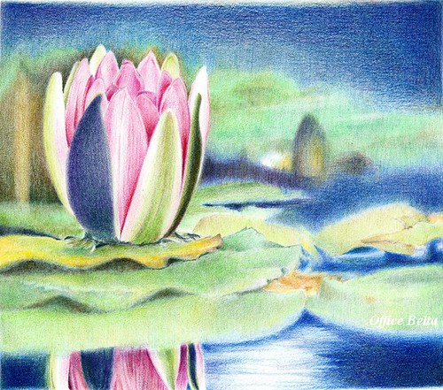 2012_06_28_waterlily_17 | by blue_belta