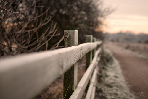 Winter Fence | by Nick P Lee