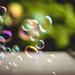 Bubbles #226/366