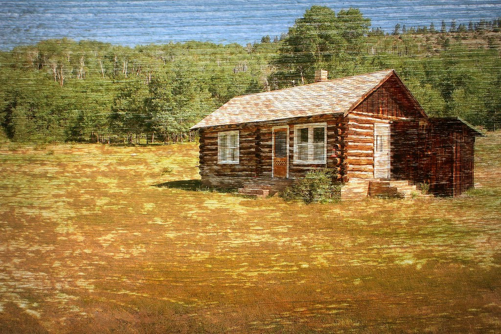 Texture - Little House on the Prairie | Log cabin found in
