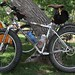 CVO's Dakota Five-Oh ride