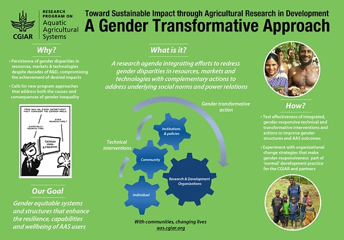 A gender transformative approach. Design by Beth Timmers, 2012. | by WorldFish