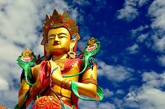 Buddha by @mons.always