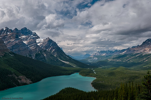 Peyto Lake - Banff National Park | by petechar