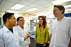 Matthias Wissuwa, Sigrid Heuer, JH Chin, and Rico Gamuyao during a discussion in the lab at IRRI