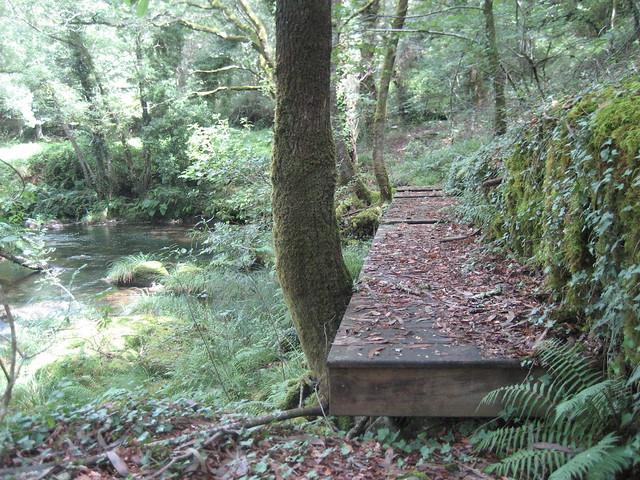 Pasarela de madera en la ruta dos ríos de Vilacoba e San Xusto