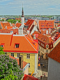 Tallinn (Old Town), Estonia | by どこでもいっしょ