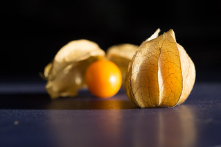 13 - September - 2012 -- Physalis | by reway2007