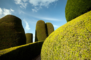 Topiary, Packwood House, Warwickshire, UK | by Pictures from the Ghost Garden