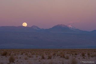 Moon Rise | by mortimer?