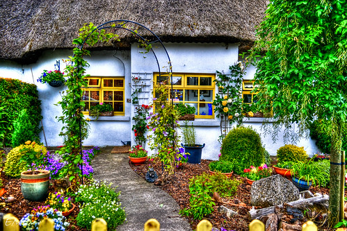 Colourful Cottage Garden Eileen Emc Pro Flickr
