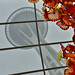 Seattle Space Needle and Chihuly Glass Garden