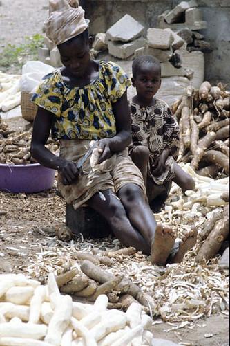 Peeling cassava roots
