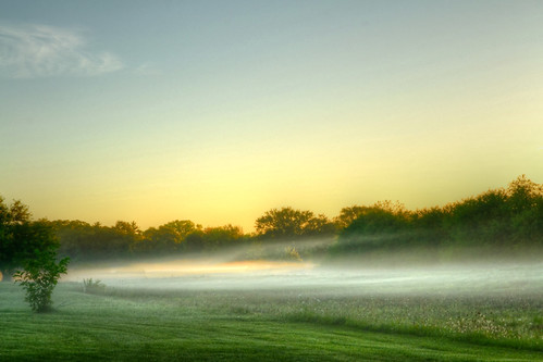 morning fog | by olsonj