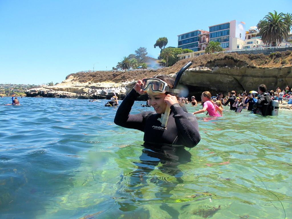La jolla cove snorkeling visibility software