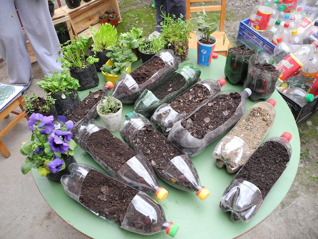 Palmeras con material reciclado haciendo el huerto - Palmeras de plastico ...