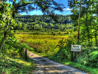 Sweet Hollow Road Long Island Reddit