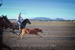 Just the cowboy in me (Explored!) | by Shayne B (busy)
