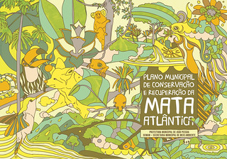 Mata Atlântica | by D Vincent