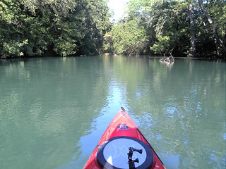 San Marcos River 9-2-2012 From Shady Grove Campround to Staples Dam | by CorkySandpiper