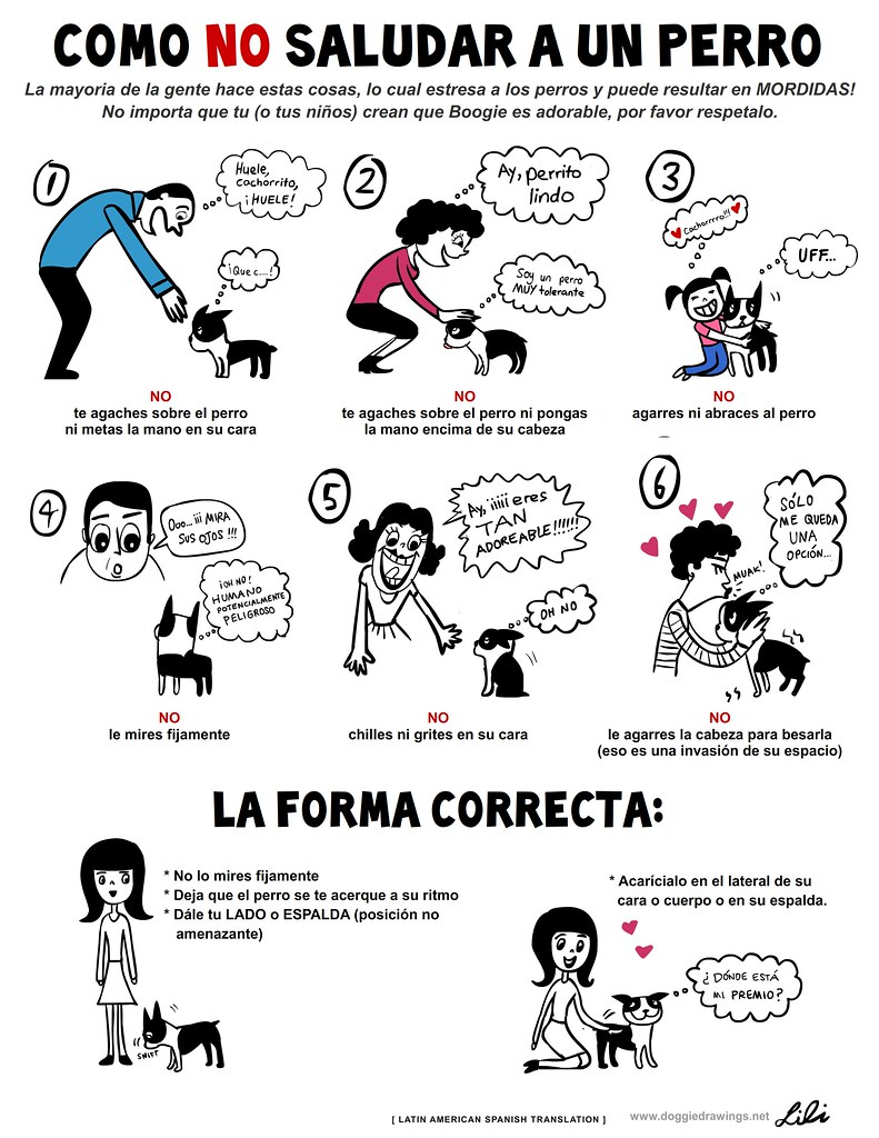 Latin american spanish version how not to greet a dog flickr latin american spanish version how not to greet a dog by liliin m4hsunfo