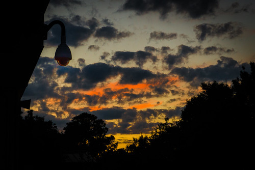 "Day 254- Wonder if ""big brother"" watches the sunset? 