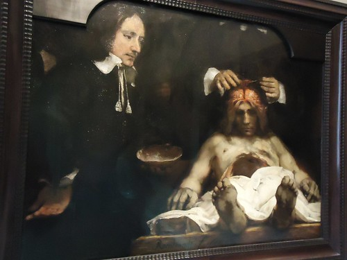 The Amsterdam Museum The Anatomy Lesson Of Dr Jan Deijma