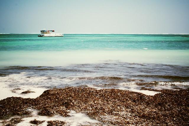 Carribean Sea, Playa Bavaro, Dominican Republic