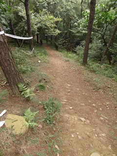 Trailhead @Yushan MTB Trip, Shanghai, China | by Phreddie