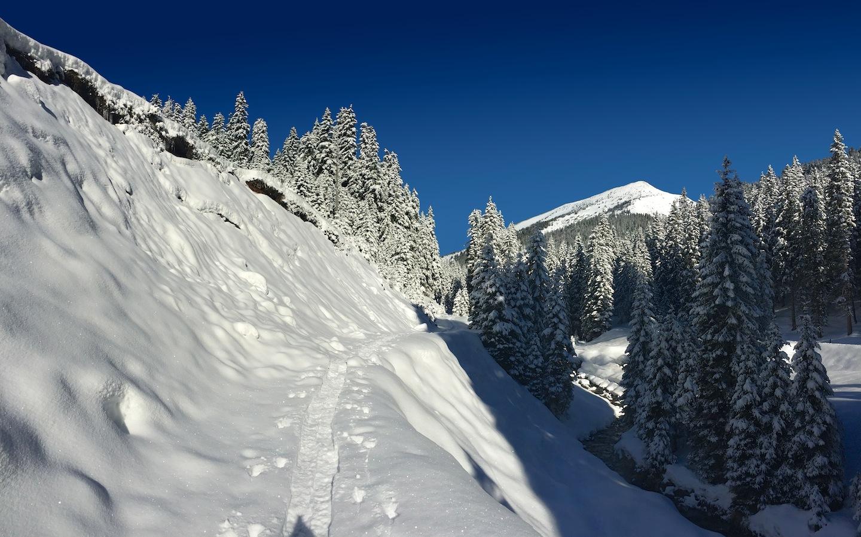 Údolí Královského potoka (Königsbach)
