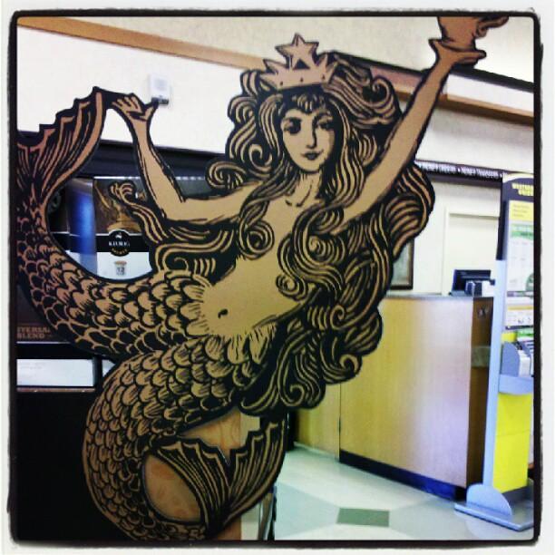 Starbucks Mermaid Starbucks Siren Mermaid Littlemisslibrarian Flickr