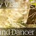 Wind Dancer Header