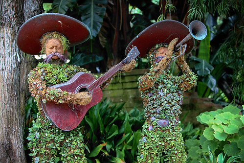 Botanical Mariachis | by Noah M