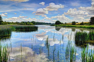 Former reservoir, Northants | by Baz Richardson (13m views - thank you)