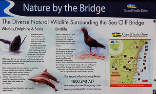 Nature Sign at the Sea Cliff Bridge, Stanwell Park, NSW | by Black Diamond Images