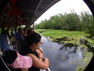 The Jean Lafitte Swamp Tour in Marrero, LA (8-24-12) Photo #6 | by 54StorminWillyGJ54