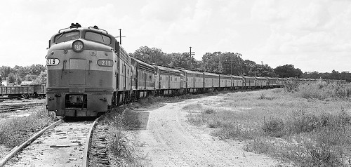Amtrak collection of out of service EMD E-units awaiting disposition at the yard in Wildwood, Florida, mid 1970's | by alcomike43