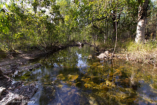 Litchfield National Park | by The0dora Photography