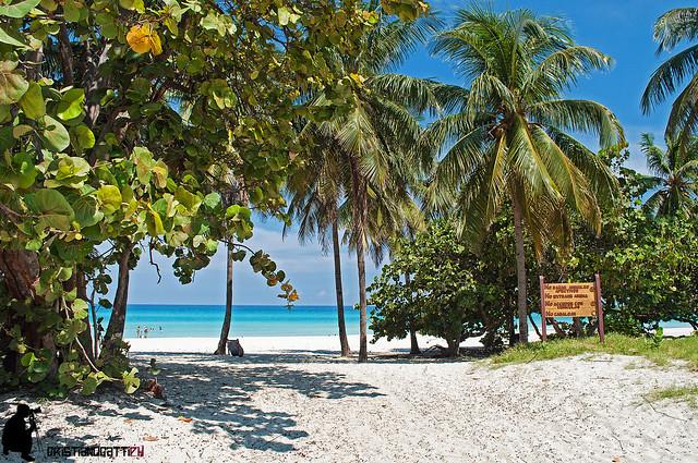 Cubano Beach Club Portsmouth Address