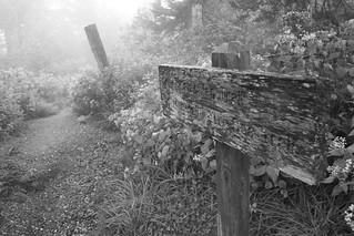 Appalachian Trail Journey (Black And White) | by Adam's Journey