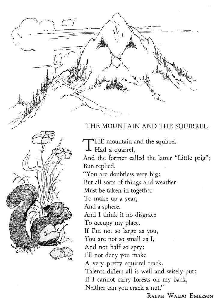 The Mountain And The Squirrel Illustrated By Don Nelson