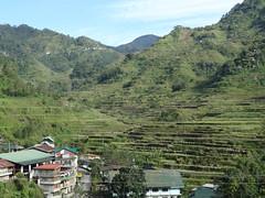 Reisterrassen von Banaue