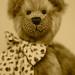 Portrait Bear. By Ian Layzell