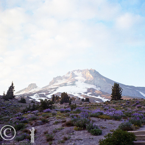 Mt. Hood from Timberline Lodge | by CraftyMoni
