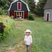 Potter's Cottage - Cape Breton