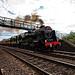 The Waverley 46115 Steam Train - York to Carlisle